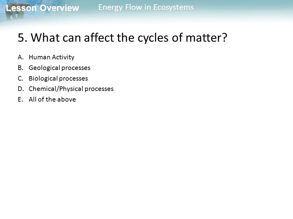 Lesson Overview Lesson Overview Energy Flow in Ecosystems 5. What can affect the cycles of matter? A.Human Activity B.Geological processes C.Biologica