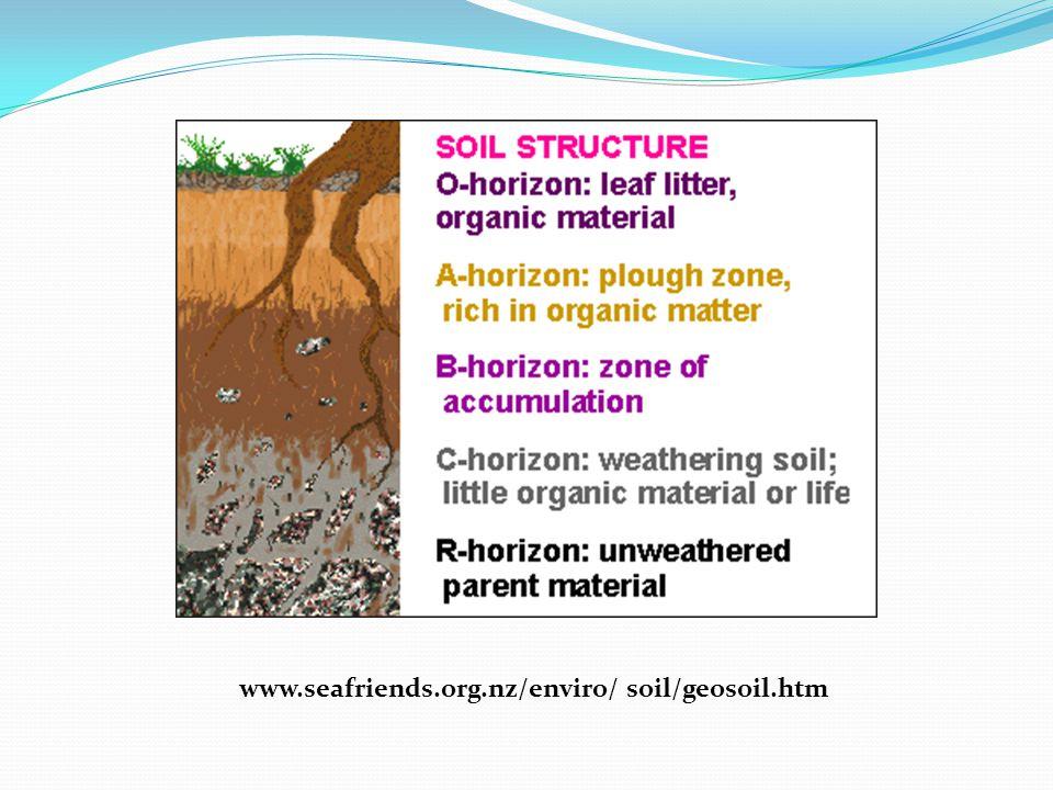 www.seafriends.org.nz/enviro/ soil/geosoil.htm