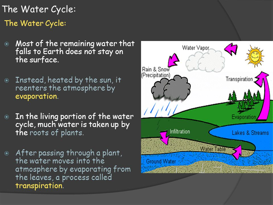 The Water Cycle:  Most of the remaining water that falls to Earth does not stay on the surface.  Instead, heated by the sun, it reenters the atmosph