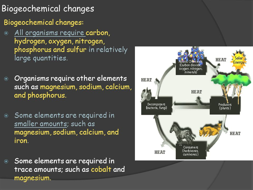 Biogeochemical changes Biogeochemical changes:  All organisms require carbon, hydrogen, oxygen, nitrogen, phosphorus and sulfur in relatively large q