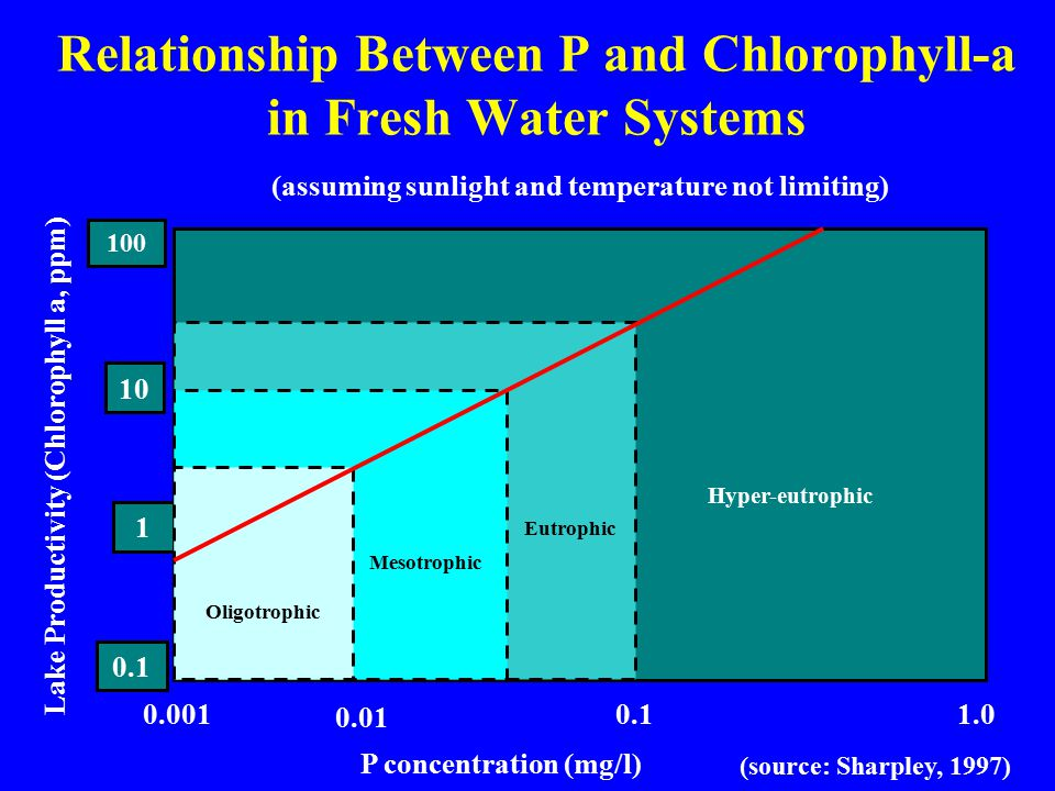 Relationship Between P and Chlorophyll-a in Fresh Water Systems 0.1 1 10 100 0.001 0.01 0.11.0 Oligotrophic Mesotrophic Eutrophic Hyper-eutrophic P concentration (mg/l) Lake Productivity (Chlorophyll a, ppm) (source: Sharpley, 1997) (assuming sunlight and temperature not limiting)