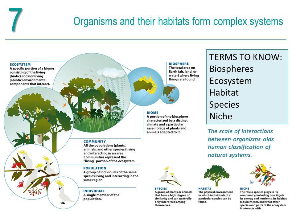 Organisms and their habitats form complex systems7 Tundra Tropical rainforest Boreal forest Mediterranean scrub Desert Savanna