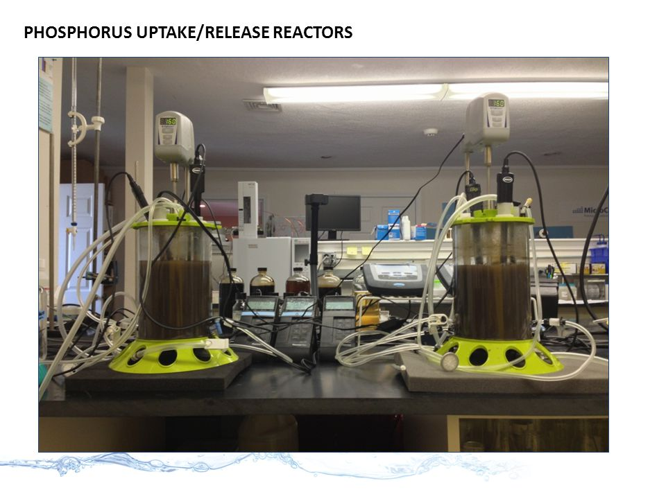 PHOSPHORUS UPTAKE/RELEASE REACTORS