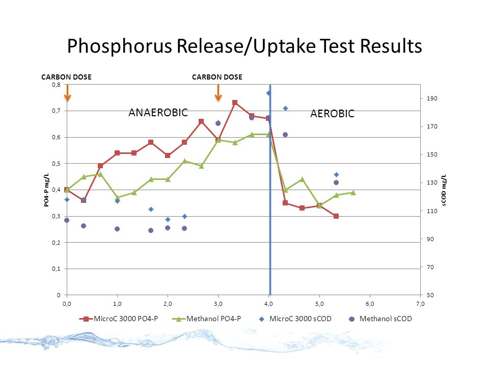 Phosphorus Release/Uptake Test Results ANAEROBIC AEROBIC CARBON DOSE