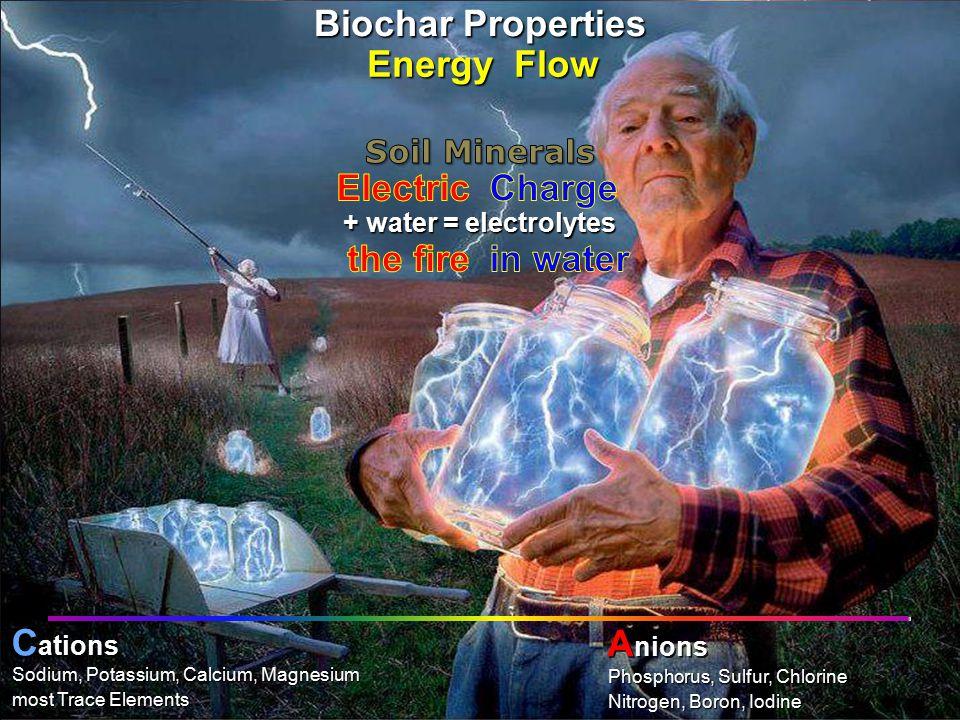 PHOTO: Bob Cirino, University of Delaware into chlorophyllcarbohydratesphotosynthesis + water = electrolytes Nitrogen, Boron, Iodine Phosphorus, Sulfur, Chlorine Anions most Trace Elements Sodium, Potassium, Calcium, Magnesium Cations Energy Flow Biochar Properties