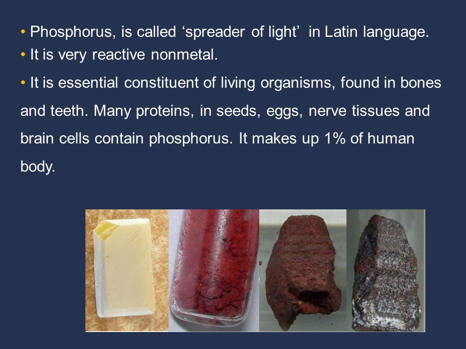 Phosphorus, is called 'spreader of light' in Latin language. It is very reactive nonmetal. It is essential constituent of living organisms, found in b