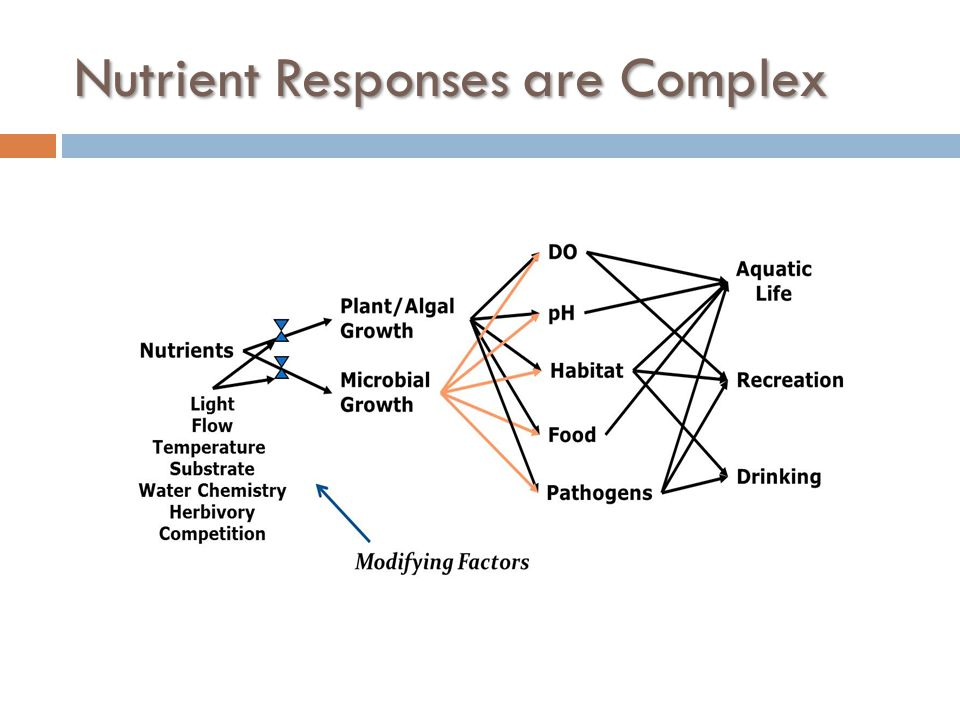 Nutrient Responses are Complex