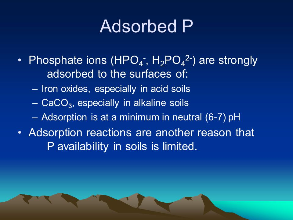 Adsorbed P Phosphate ions (HPO 4 -, H 2 PO 4 2- ) are strongly adsorbed to the surfaces of: –Iron oxides, especially in acid soils –CaCO 3, especially