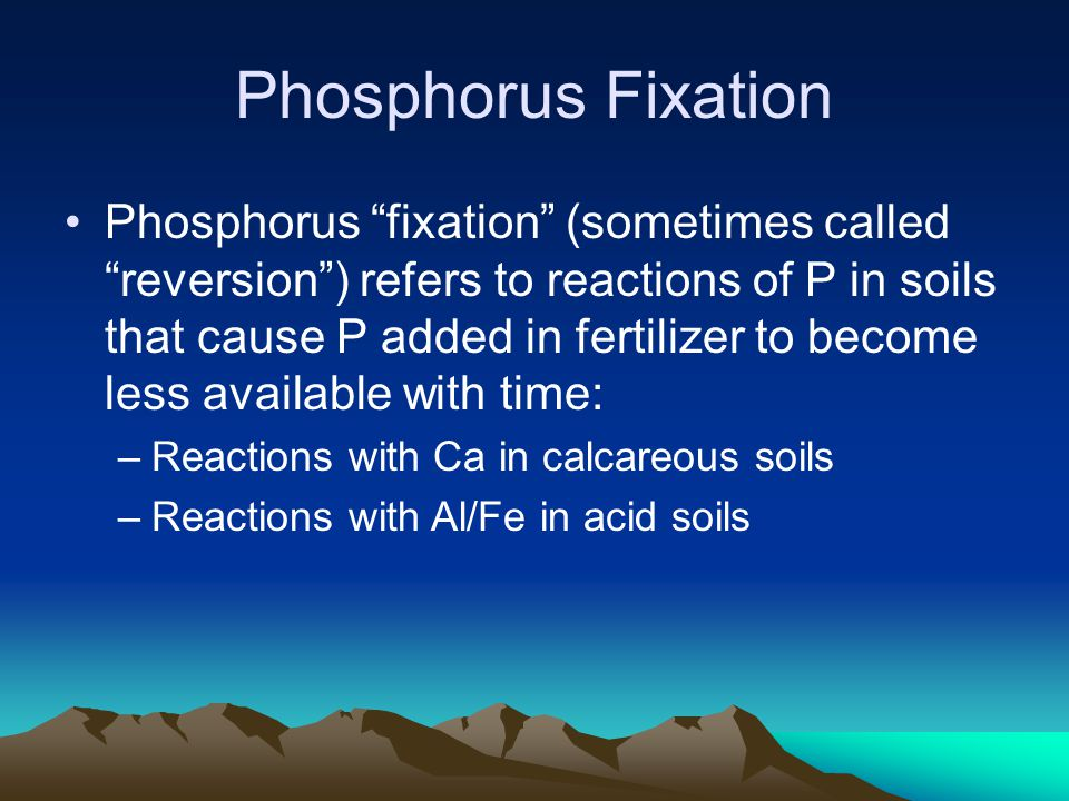 "Phosphorus Fixation Phosphorus ""fixation"" (sometimes called ""reversion"") refers to reactions of P in soils that cause P added in fertilizer to become"
