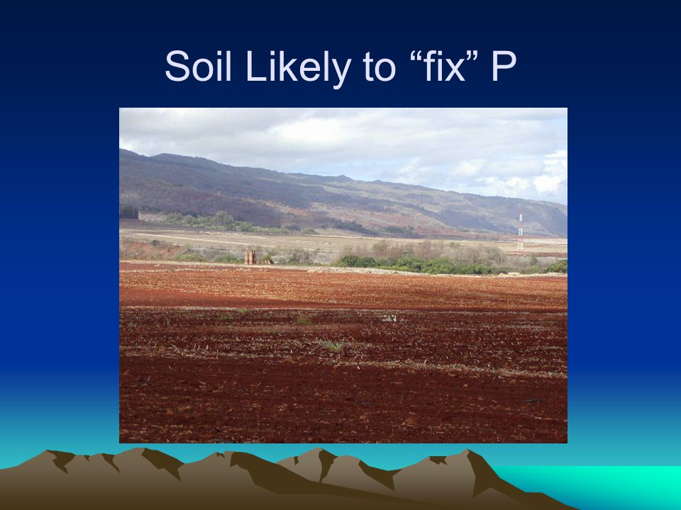 "Soil Likely to ""fix"" P"