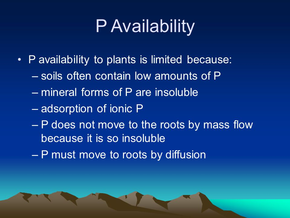 P Availability P availability to plants is limited because: –soils often contain low amounts of P –mineral forms of P are insoluble –adsorption of ion