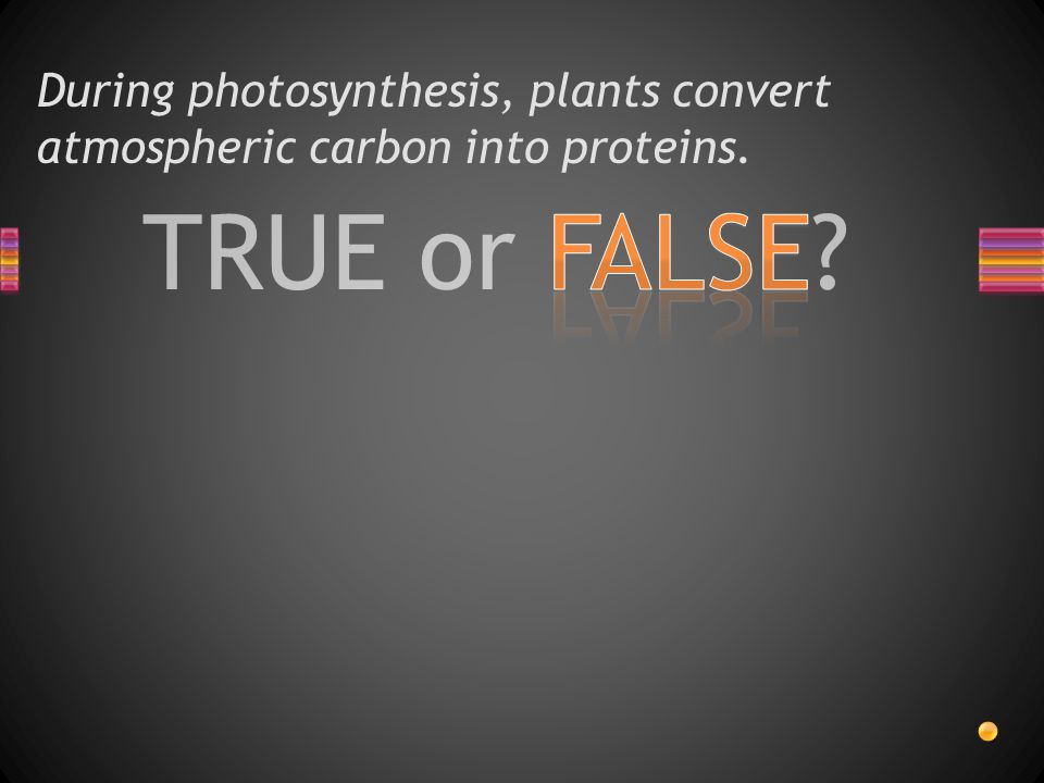 TRUE or FALSE During photosynthesis, plants convert atmospheric carbon into proteins.
