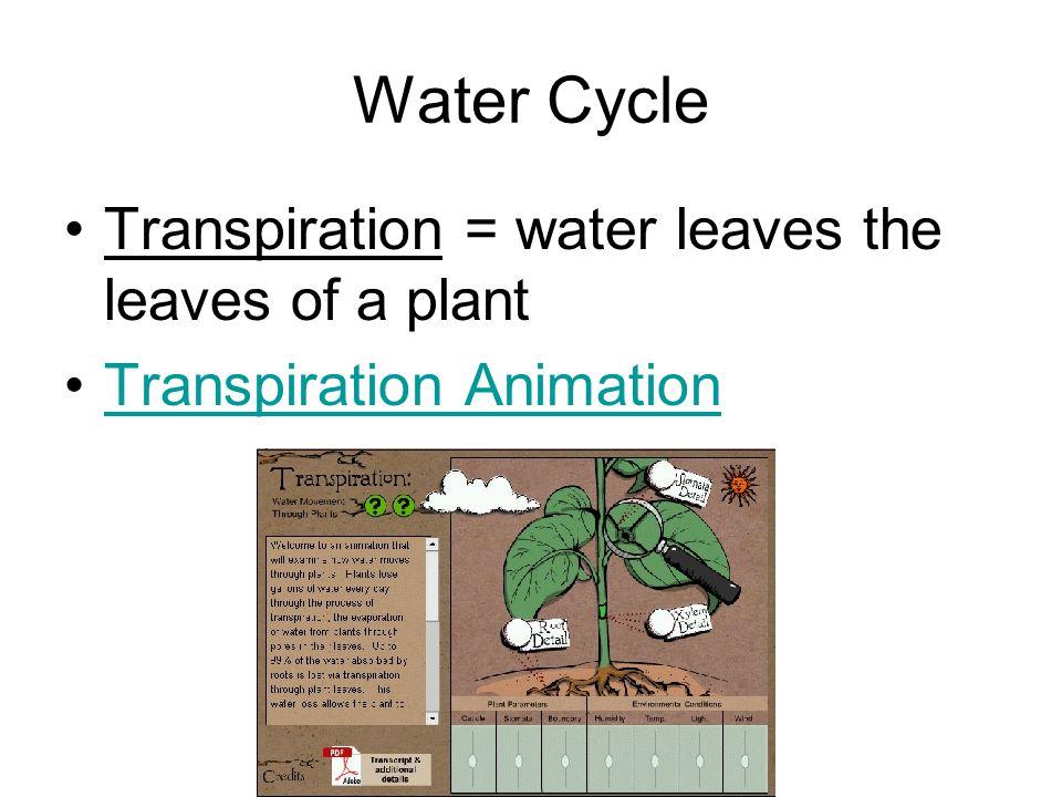 2. Uptake by Organisms Clover is a low cost source of nitrogen. Urine, fertilizer add nitrogen