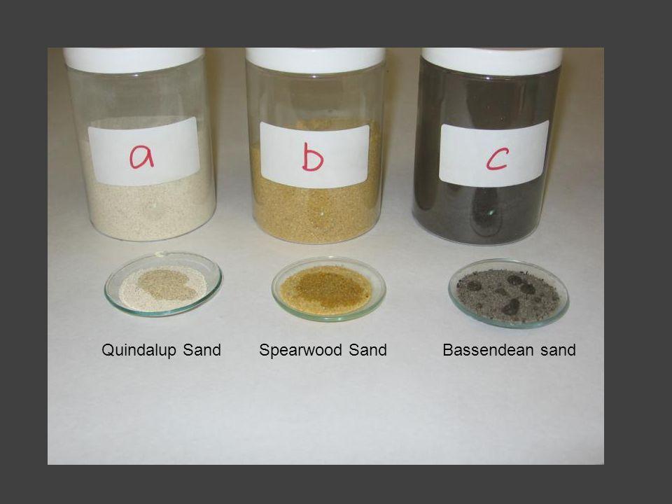Quindalup SandSpearwood SandBassendean sand