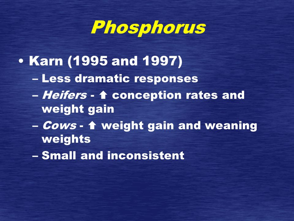 Phosphorus Karn (1995 and 1997) –Less dramatic responses –Heifers -  conception rates and weight gain –Cows -  weight gain and weaning weights –Small and inconsistent