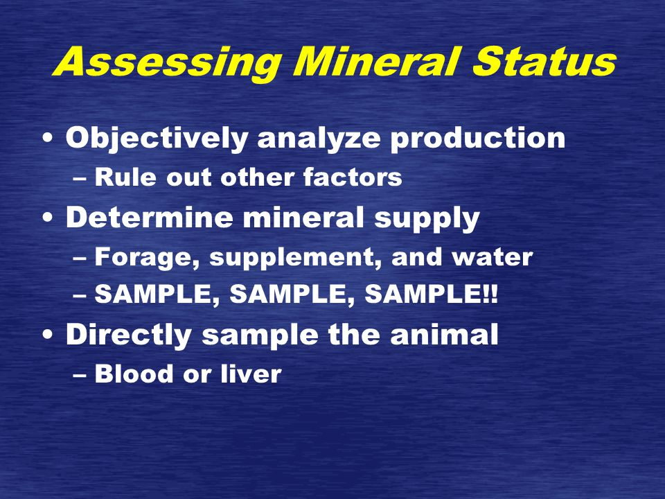 Assessing Mineral Status Objectively analyze production –Rule out other factors Determine mineral supply –Forage, supplement, and water –SAMPLE, SAMPLE, SAMPLE!.