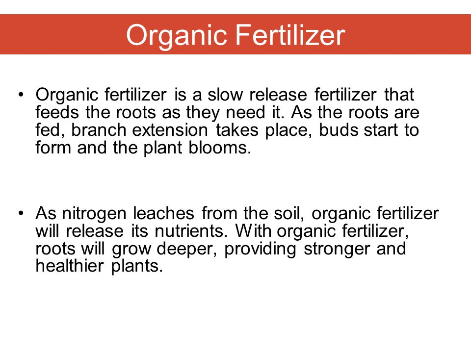 Organic Fertilizer Organic fertilizer is a slow release fertilizer that feeds the roots as they need it. As the roots are fed, branch extension takes