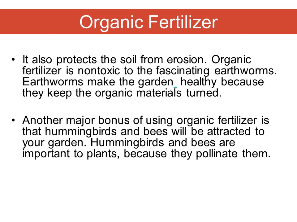 Organic Fertilizer It also protects the soil from erosion.
