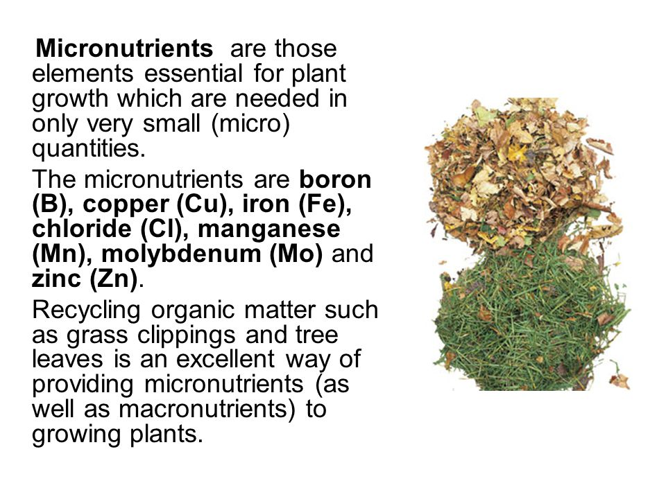 Micronutrients are those elements essential for plant growth which are needed in only very small (micro) quantities.