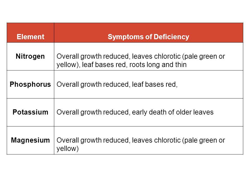 Phosphate: Leaves darker than normal.