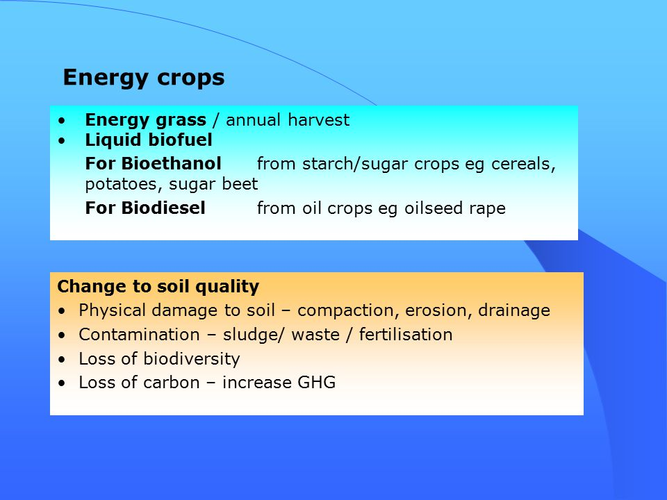 Energy grass / annual harvest Liquid biofuel For Bioethanol from starch/sugar crops eg cereals, potatoes, sugar beet For Biodiesel from oil crops eg oilseed rape Energy crops Change to soil quality Physical damage to soil – compaction, erosion, drainage Contamination – sludge/ waste / fertilisation Loss of biodiversity Loss of carbon – increase GHG