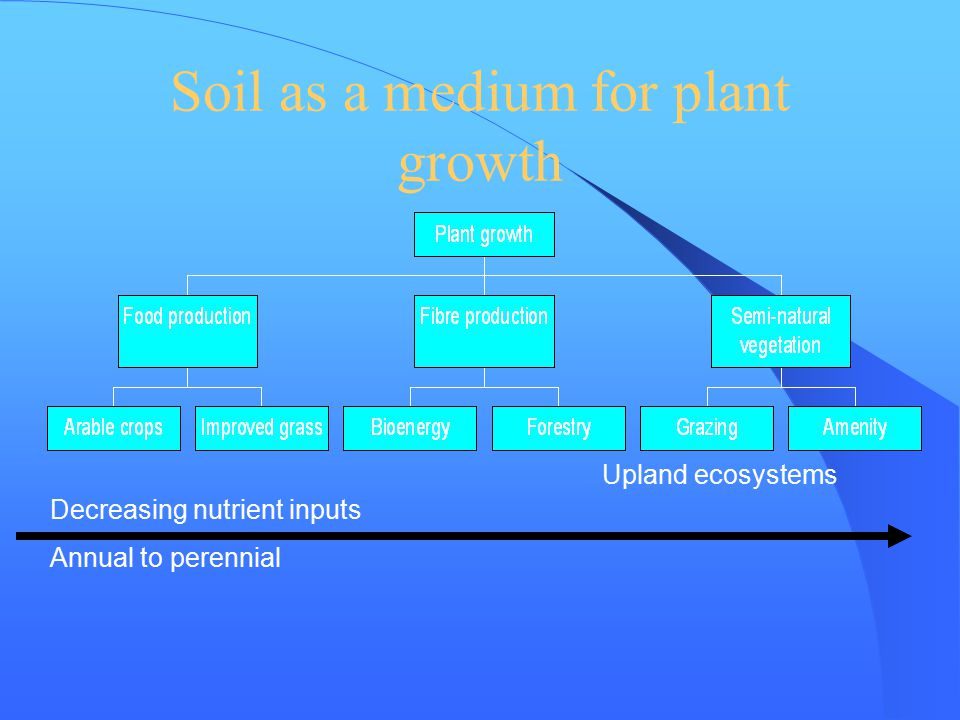 Soil as a medium for plant growth Upland ecosystems Decreasing nutrient inputs Annual to perennial