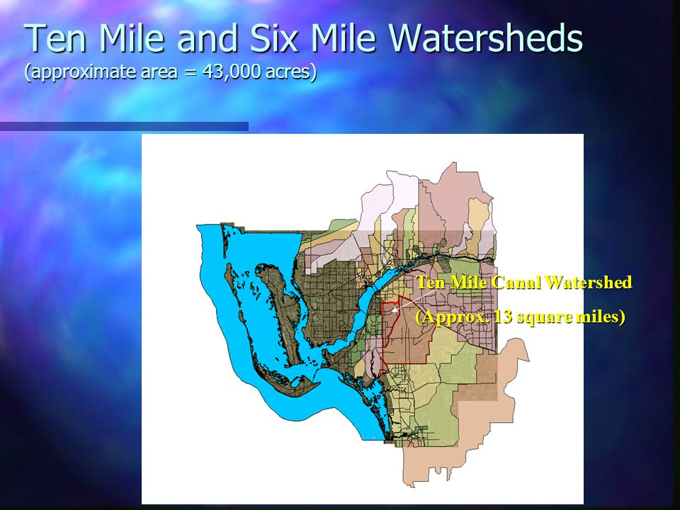 Performance of Ten Mile Canal Filter Marsh Project Filter Marsh Cell Orientation and Operation North Settling Cell/ Filter Marsh North Filter Marsh South Settling Cell/ Filter Marsh South Filter Marsh Lee County Division of Natural Resources