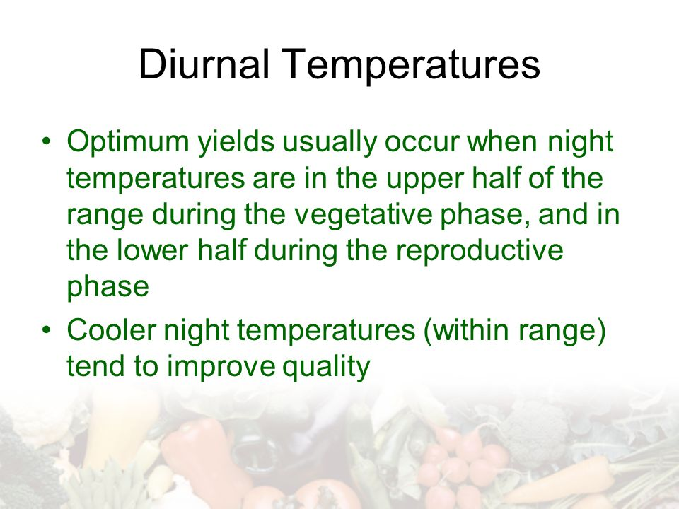 Diurnal Temperatures Optimum yields usually occur when night temperatures are in the upper half of the range during the vegetative phase, and in the lower half during the reproductive phase Cooler night temperatures (within range) tend to improve quality
