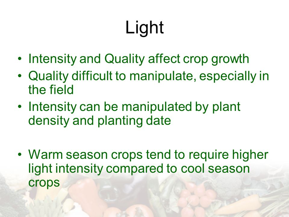 Light Intensity and Quality affect crop growth Quality difficult to manipulate, especially in the field Intensity can be manipulated by plant density and planting date Warm season crops tend to require higher light intensity compared to cool season crops