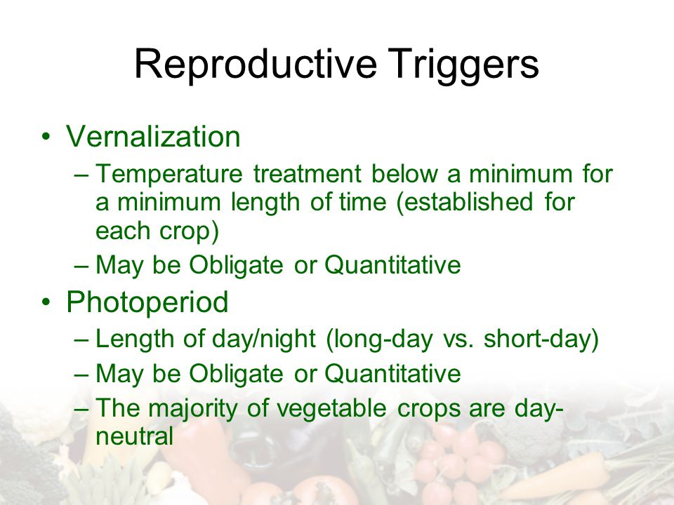 Reproductive Triggers Vernalization –Temperature treatment below a minimum for a minimum length of time (established for each crop) –May be Obligate or Quantitative Photoperiod –Length of day/night (long-day vs.