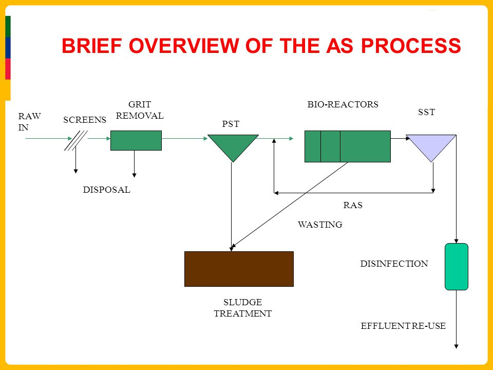 BRIEF OVERVIEW OF THE AS PROCESS RAW IN SCREENS GRIT REMOVAL PST BIO-REACTORS SST SLUDGE TREATMENT DISINFECTION DISPOSAL RAS WASTING EFFLUENT RE-USE