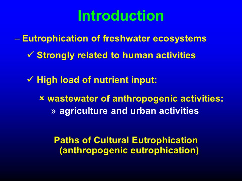Introduction –Eutrophication of freshwater ecosystems Strongly related to human activities High load of nutrient input:  wastewater of anthropogenic