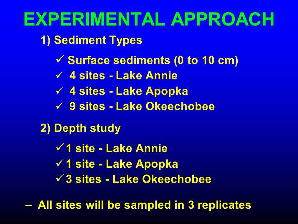 EXPERIMENTAL APPROACH 1) Sediment Types Surface sediments (0 to 10 cm) 4 sites - Lake Annie 4 sites - Lake Apopka 9 sites - Lake Okeechobee 2) Depth s