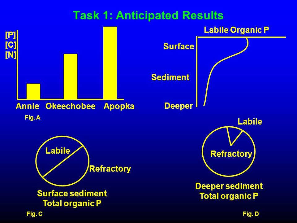 Task 1: Anticipated Results Deeper sediment Total organic P Refractory Labile Fig. D [P] [C] [N] Annie Okeechobee Apopka Fig. A Labile Organic P Surfa