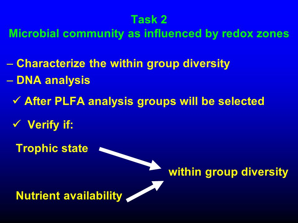 Task 2 Microbial community as influenced by redox zones – Characterize the within group diversity – DNA analysis After PLFA analysis groups will be selected Verify if: Trophic state Nutrient availability within group diversity