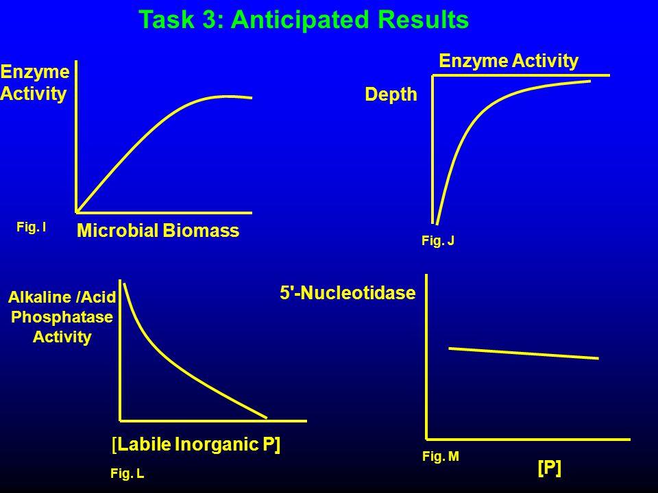Alkaline /Acid Phosphatase Activity [Labile Inorganic P] Fig. L Microbial Biomass Enzyme Activity Fig. I Fig. J Enzyme Activity Depth 5'-Nucleotidase
