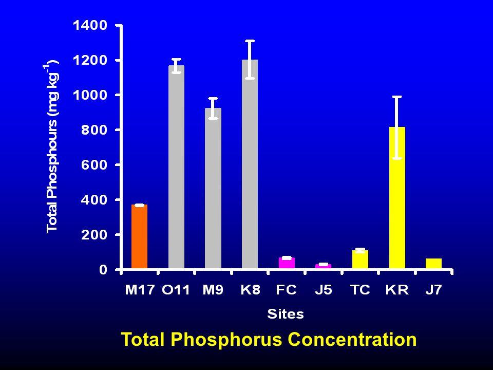Total Phosphorus Concentration