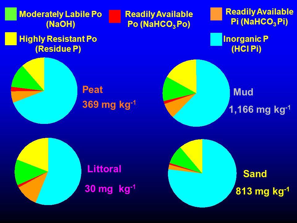 813 mg kg -1 Moderately Labile Po (NaOH) Readily Available Pi (NaHCO 3 Pi) Inorganic P (HCl Pi) Highly Resistant Po (Residue P) Readily Available Po (