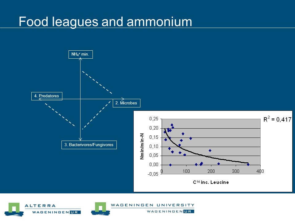 Food leagues and ammonium NH 4 + min. 2. Microbes 4. Predatores 3. Bacterivores/Fungivores