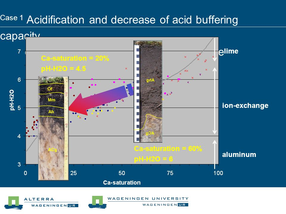 Case 1 Acidification and decrease of acid buffering capacity development of a stratified humus profile lime ion-exchange aluminum Ca-saturation = 60% pH-H2O = 6 Ca-saturation = 20% pH-H2O = 4.5