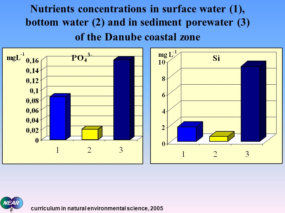 Nutrients concentrations in surface water (1), bottom water (2) and in sediment porewater (3) of the Danube coastal zone curriculum in natural environmental science, 2005