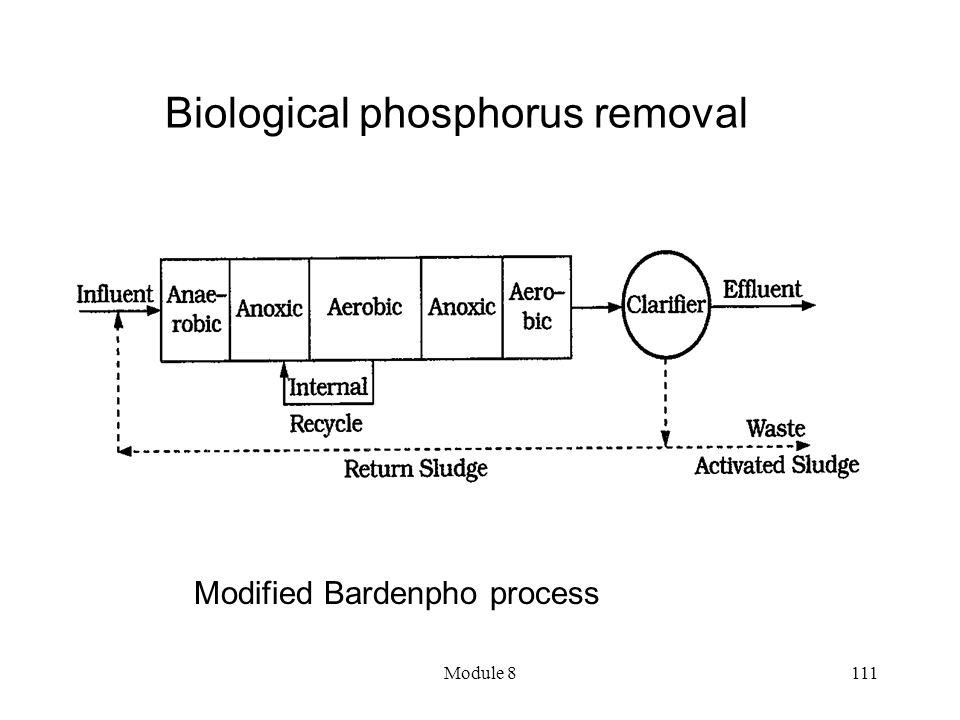 Module 8111 Biological phosphorus removal Modified Bardenpho process