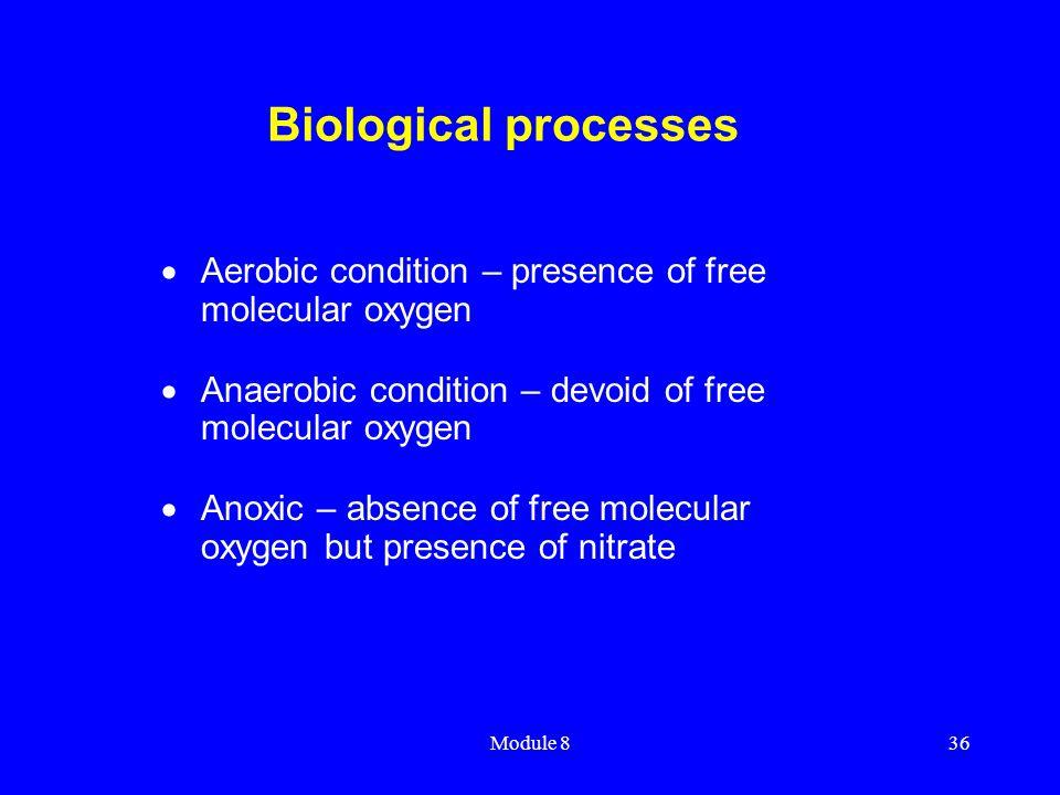 Module 836 Biological processes  Aerobic condition – presence of free molecular oxygen  Anaerobic condition – devoid of free molecular oxygen  Anox