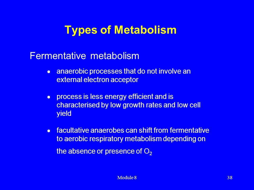 Module 838 Types of Metabolism  anaerobic processes that do not involve an external electron acceptor  process is less energy efficient and is chara