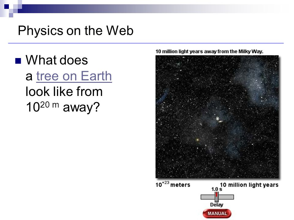 Physics on the Web What does a tree on Earth look like from 10 20 m away?tree on Earth