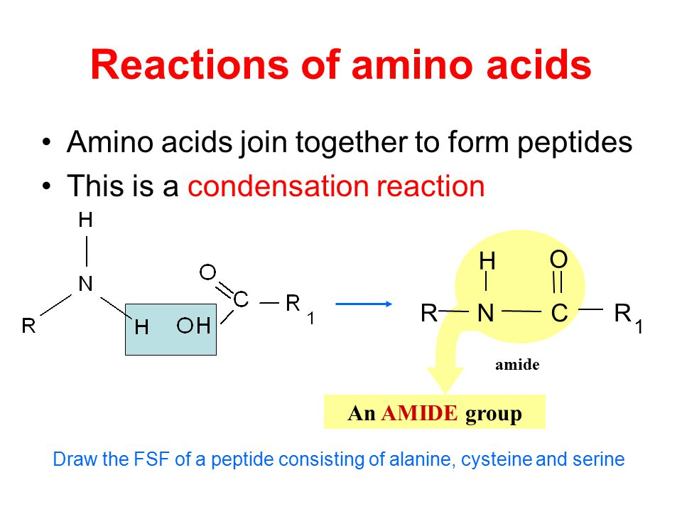 Reactions of amino acids Amino acids join together to form peptides This is a condensation reaction An AMIDE group amide N H RR 1 C O Draw the FSF of