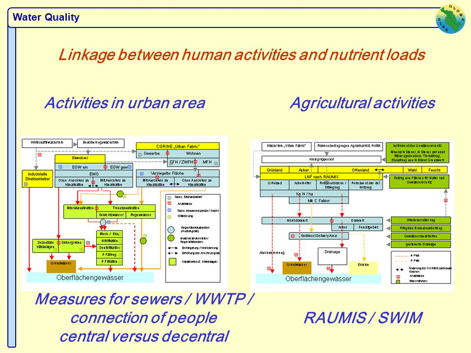 Water Quality Linkage between human activities and nutrient loads Activities in urban areaAgricultural activities Measures for sewers / WWTP / connection of people central versus decentral RAUMIS / SWIM