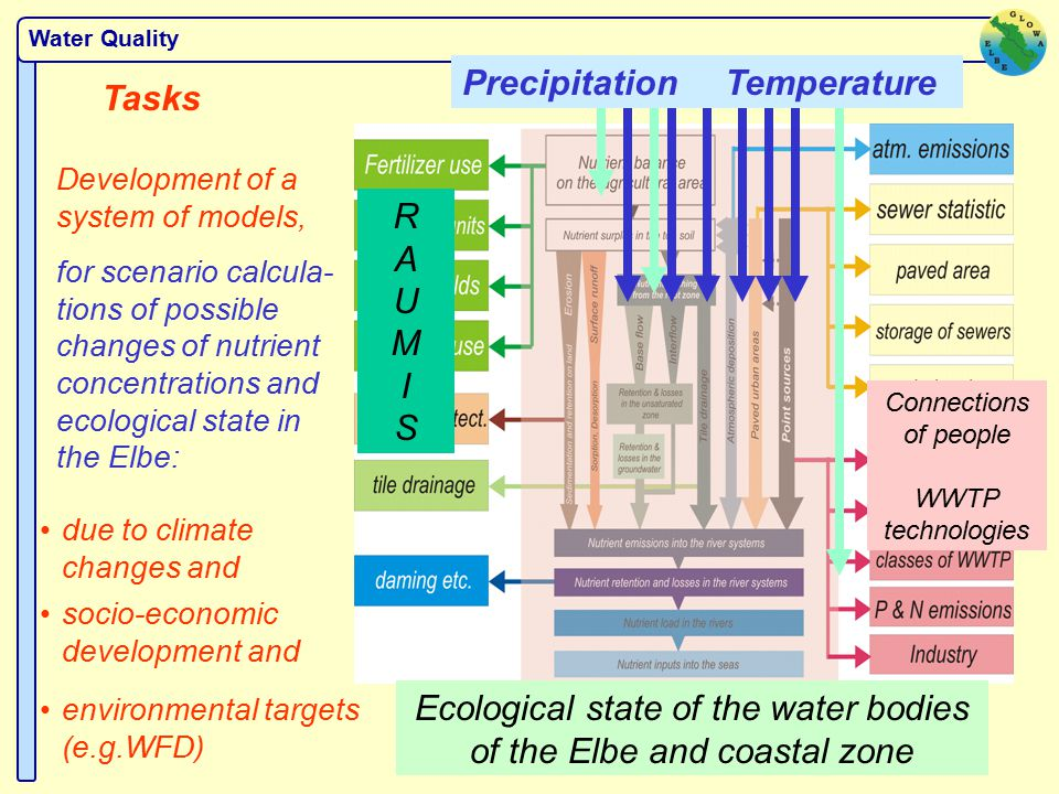 Water Quality Tasks Development of a system of models, for scenario calcula- tions of possible changes of nutrient concentrations and ecological state in the Elbe: due to climate changes and Precipitation Temperature socio-economic development and RAUMISRAUMIS Connections of people WWTP technologies environmental targets (e.g.WFD) Ecological state of the water bodies of the Elbe and coastal zone