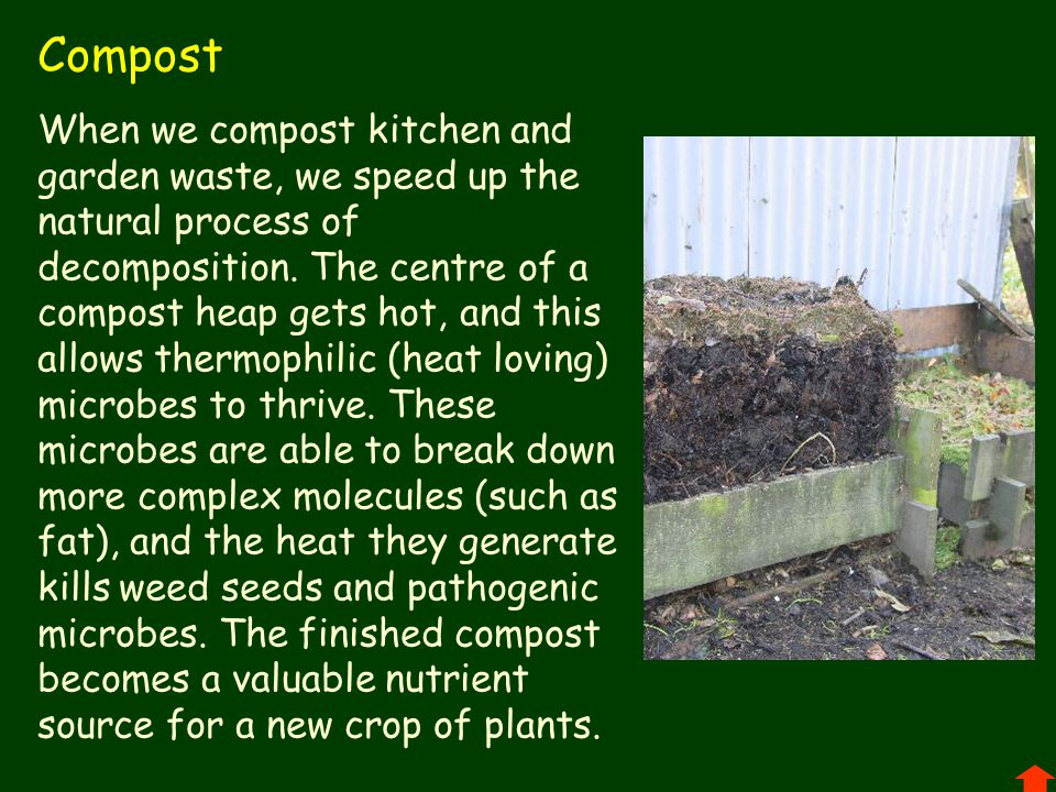 Compost When we compost kitchen and garden waste, we speed up the natural process of decomposition.