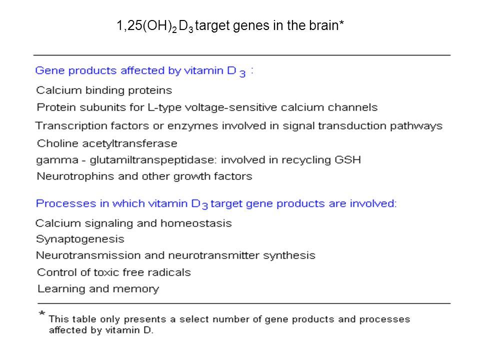1,25(OH) 2 D 3 target genes in the brain*